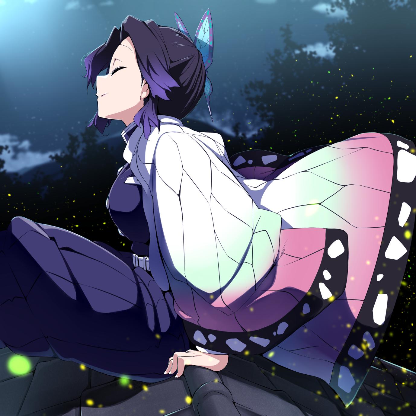 On a roof with Shinobu [Kimetsu no Yaiba]