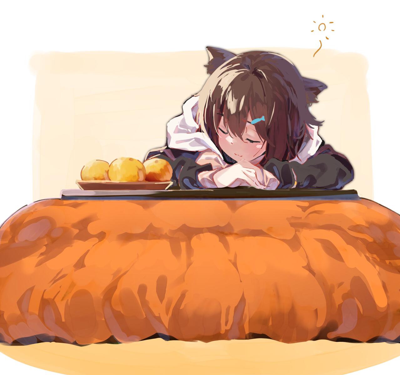 Catnap and kotatsu by らむ [Nijisanji]