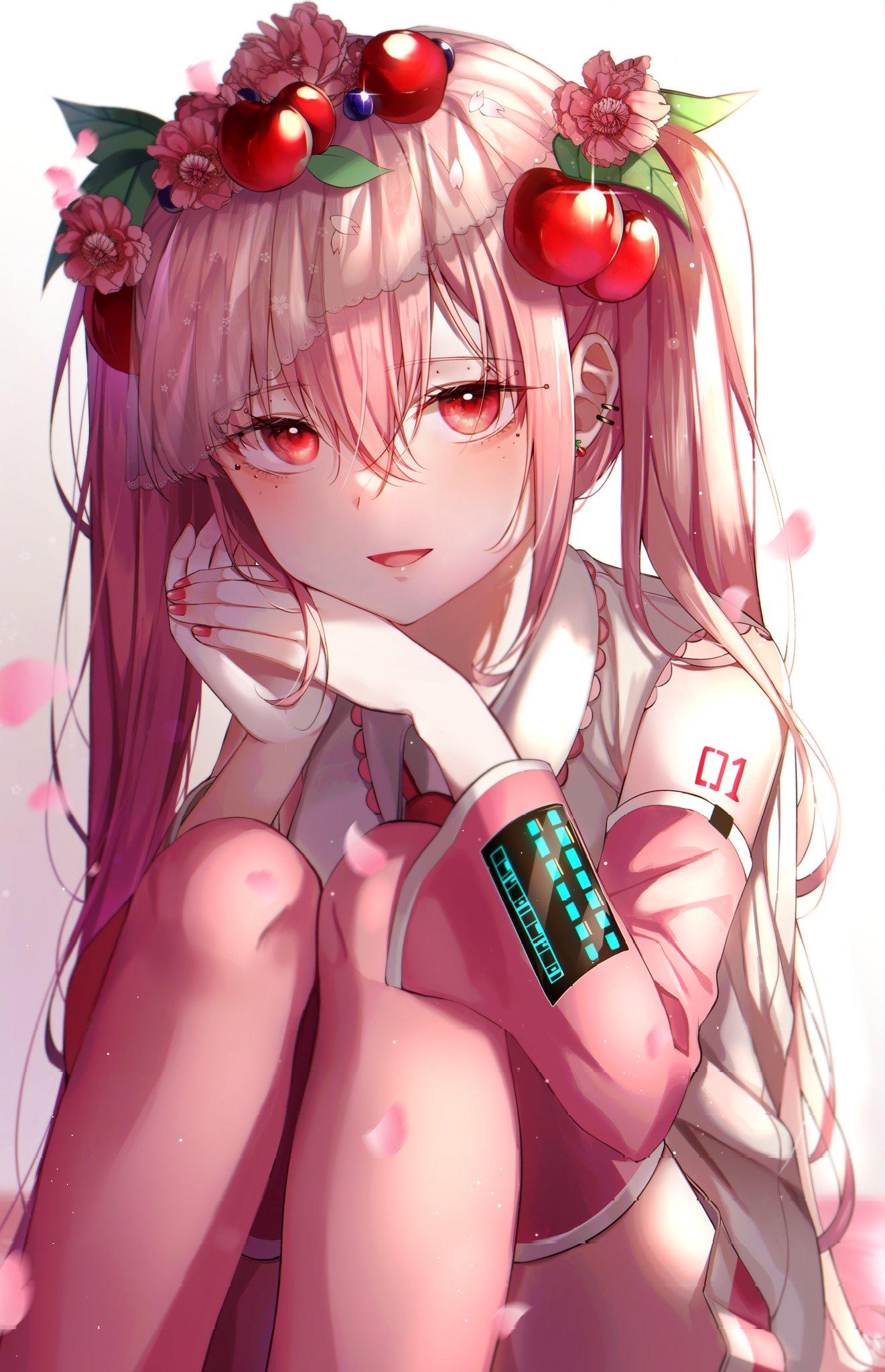Sakura Miku [Vocaloid] 🍒